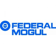 Распредвал (480EE-BJ1006015) AE Federal Mogul