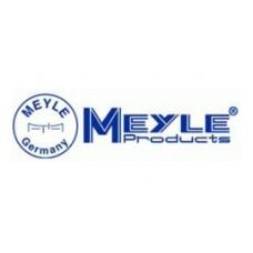 Амортизатор передний (газ-масло)(A11-2905010) MEYLE