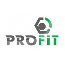 Сайлент-блок задней балки (A11-3301025) Profit